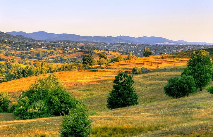 sezonas, rudens, ainava, lauku, valsts, daba, laukos