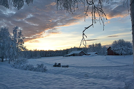 lapland, sweden, sunset, wintry, winter, snow, nature