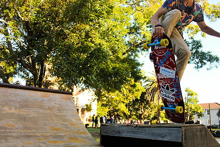 skateboarder, skateboard, ramp, outdoor, fun, sport, skate