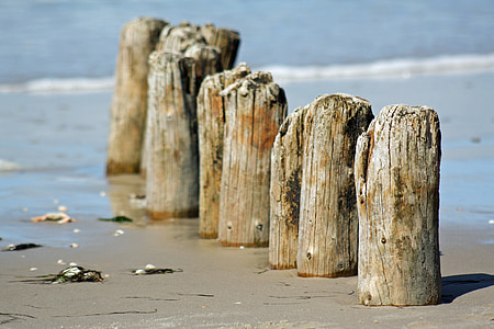 волнорезы, Краеведческий музей Амрума, Северная Фризия, пляж, мне?, Северное море, Ворс