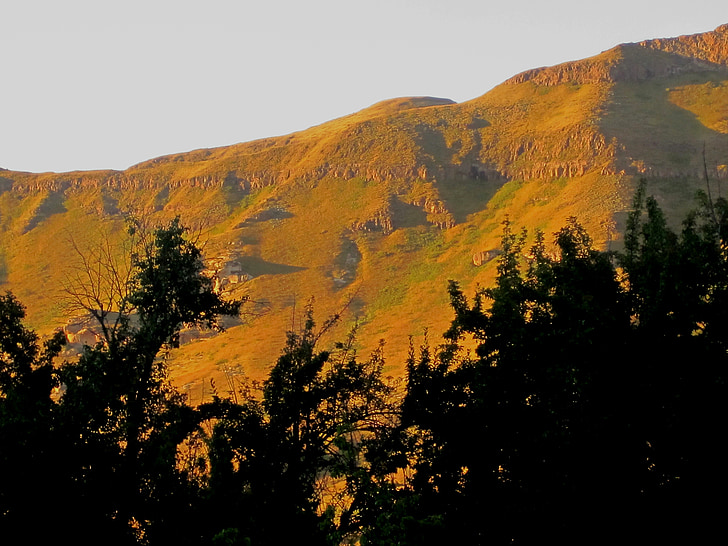mountains, yellow-green, sunlight, glow, folds, summer, late afternoon