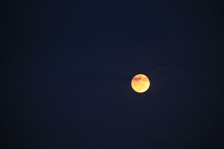 mėnulis, naktį, paprastas