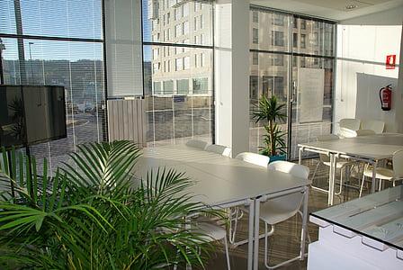 espai d'oficina, Oficina, assolellat, coworking, reunió, sala de reunions, negoci