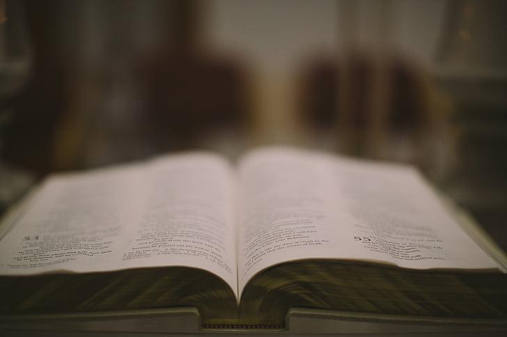 білий, надруковано, Книга, сторінка, читання, відкрити, зосередитися на передньому плані