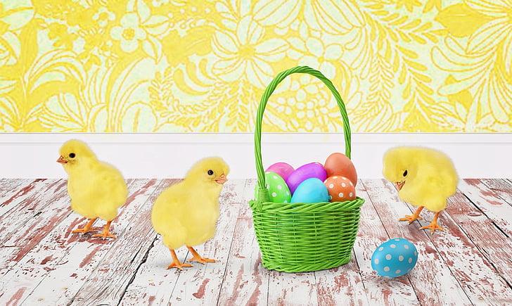 Великдень, курчат, Киньте, пасхальні яйця, Великодній кошик, свято, яйце