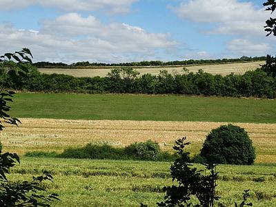 полета, пейзаж, природата, орни, Селско стопанство