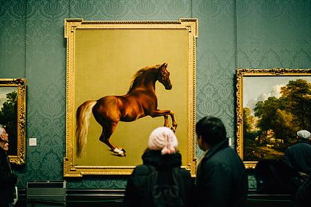 näitus, Galerii, hobune maalid, muuseum, maalid, inimesed