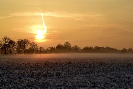 winter, frost, snow, winter magic, nature, cold, sun