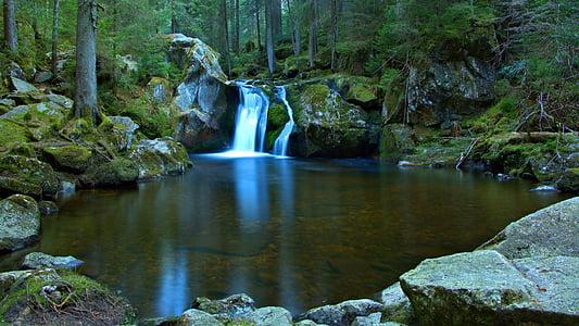 juga, metsa, loodus, jõgi, maastik, Bach, vee