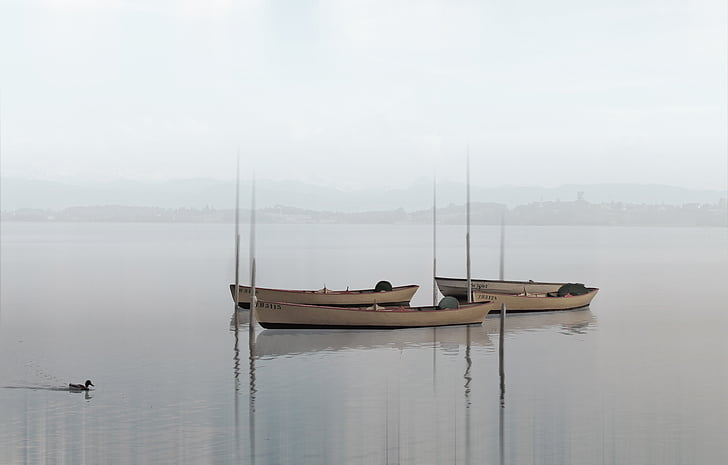 embarcacions, Llac, boira, boira, l'aigua, natura, silenciós