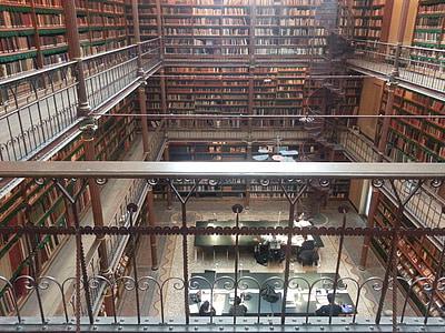 Raamatukogu, Raamatud, Rijksmuseum, Amsterdam, muuseum, Holland, hoone