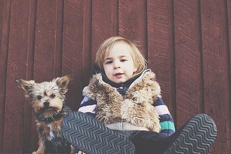 child, dog, pet, canine, puppy, childhood, kid