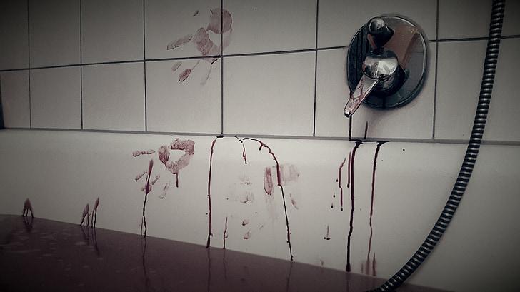 Bloodbath, pirtis, nusikalstamumo, vonios priedas, psichopatas, žmogžudystė, žudikas