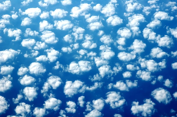 ovelles, cel, fons, blau, núvols, blanc, patró