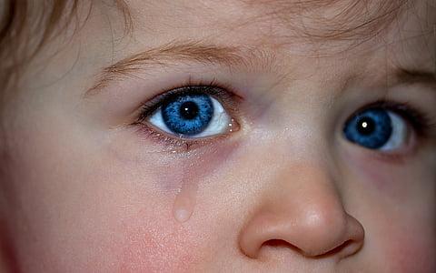 children's eyes, eyes, blue eye, emotion, feelings, expression, small child