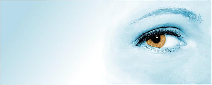 silma, naine, nägu, õpilane, taust, banner, fookus
