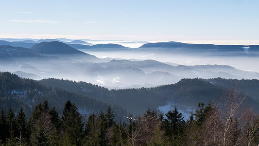 sea of fog, nebellandschaft, black forest, fog, vosges, mountain range, nature
