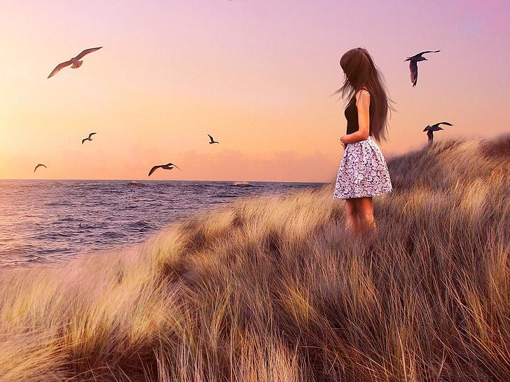jeunes filles, MS, mer, Bulgarie, Mouette, oiseau, mer Noire