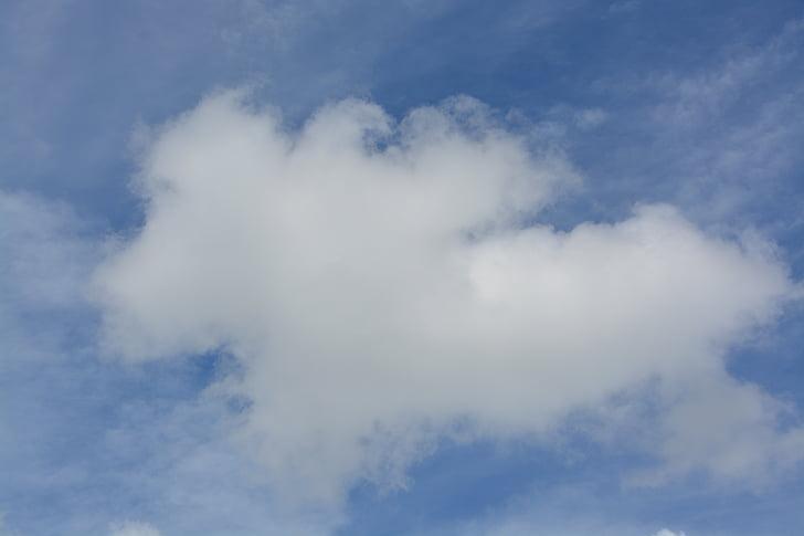 cel, núvol, formulari, blanc, blau, núvol blanc, ennuvolat