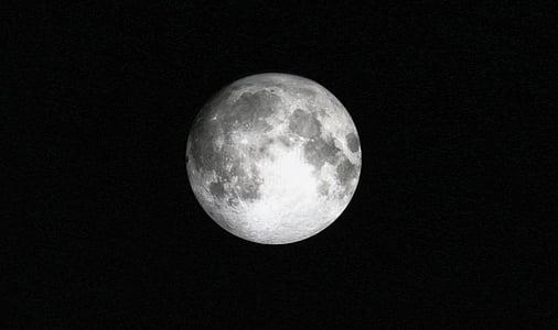 Lluna, ple, llum de lluna, lunar, l'astronomia, celestial, espai