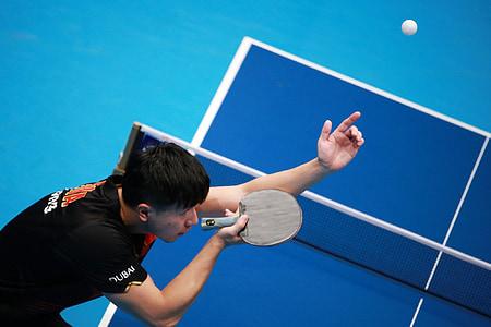 tennis de taula, ping-pong, passió, esport