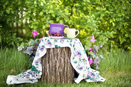 léto, Zátiší, džbán, zahrada, venku, čajový dýchánek, květ