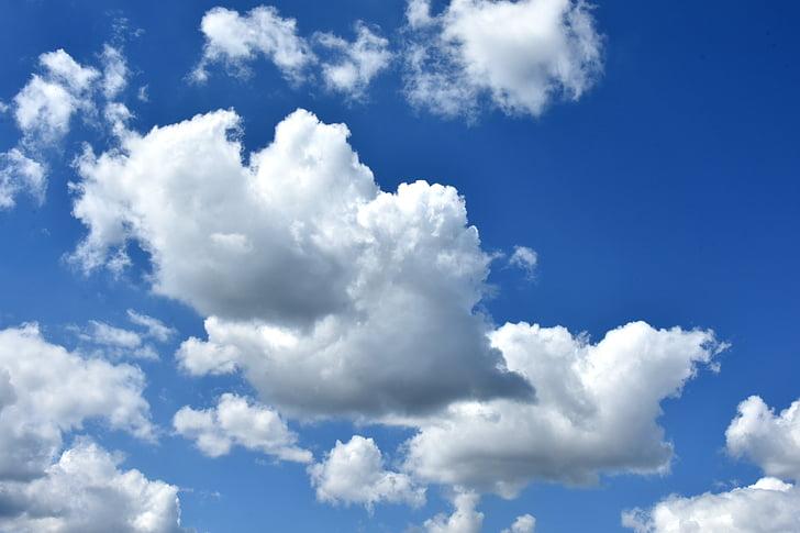 núvols, cel, Cumulus, núvol, Glomèrul renal, cel blau, Nuvolositat