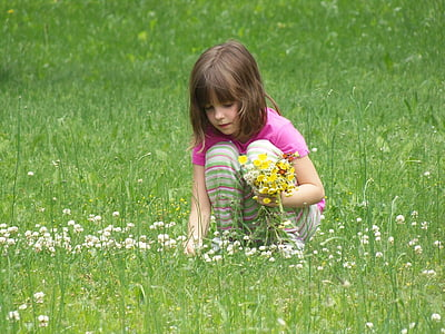 picking flowers, girl, child, beautiful, person, little, female