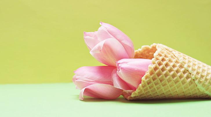 Тюльпани, Тюльпан-квітка, квіти, морозиво конуса, вафельні, жовтий, рожевий