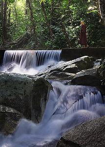theravada budismi, kõndimise Meditatsioon, munk, loodus, juga, budism, Buda