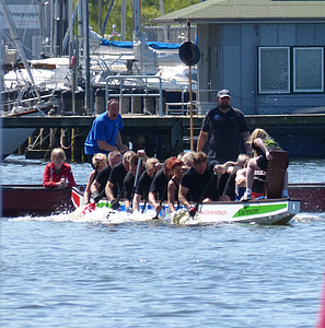 dragon boat, boot, water sports, competition, sport, paddle, dragonboat