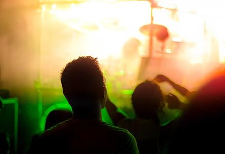 spectator, concert, crowd, event, music, audience, celebration