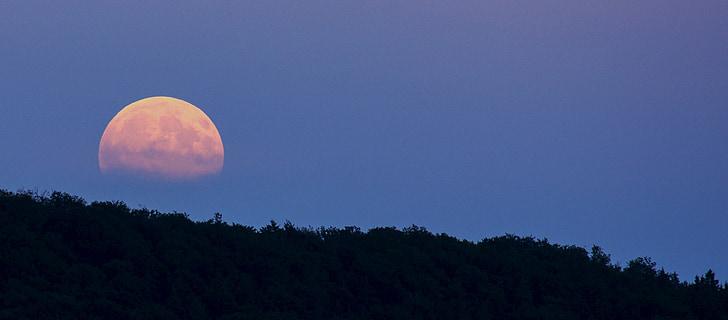 повний місяць, супер місяць, заходу, місяць, ніч, Сутінки, настрій