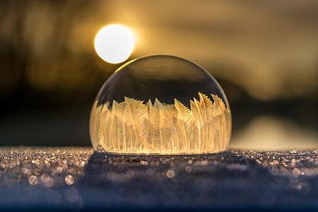 winter, soap bubble, frozen, frost, frozen bubble, wintry, cold