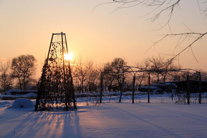 saulriets, krēslas, silts, ziemas, daba, ainava