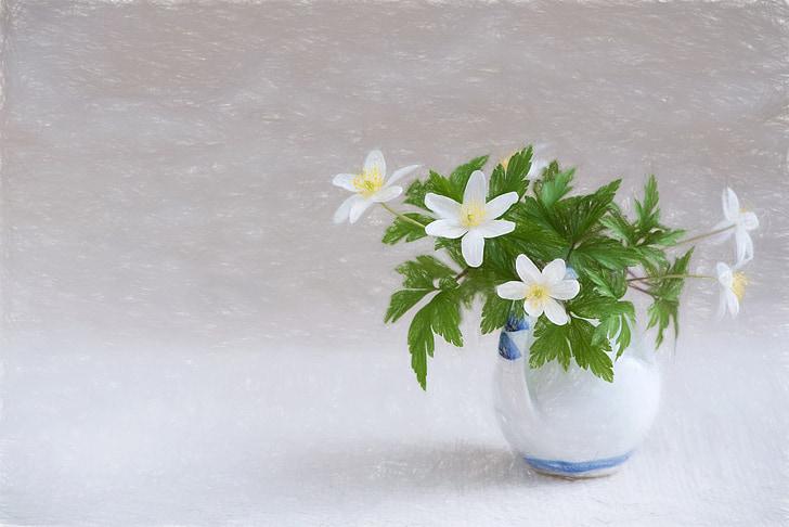 brėžinys, gėlė, Vaza, gėlės, baltos gėlės, Miško gėlės, atkreipti