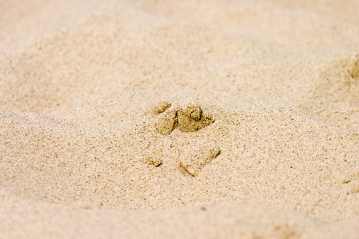smilts, pludmale, brīvdiena, smilšu pludmales, smilts karjers, kvarcs