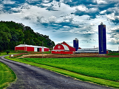 wisconsin, farm, silo, barn, buildings, road, landscape