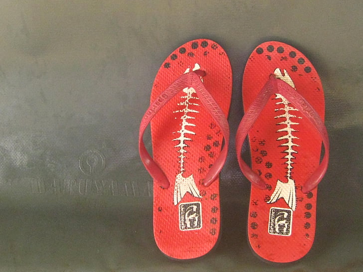 vermell, flip-flop, parell, soci