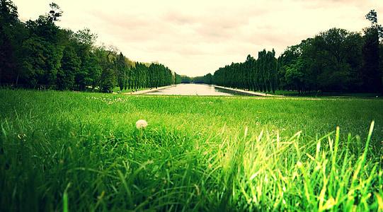 Parc, verd, natura, Parc de sceaux, paisatge, jardí