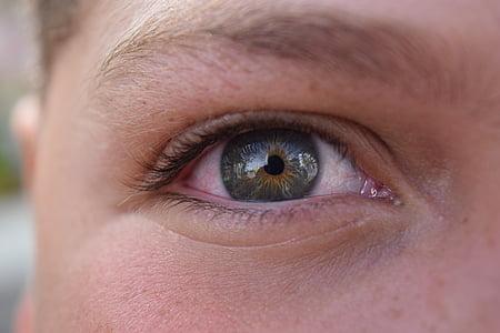 eyes, green, person, child, human eye, looking at camera, eyesight