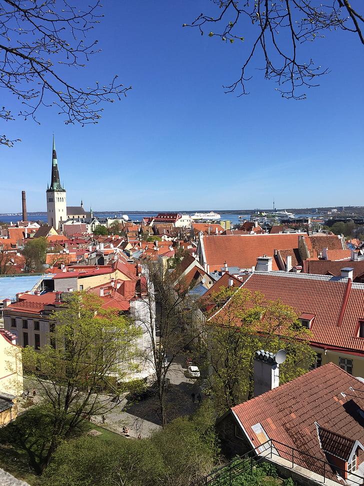 Tallinn, Europa, sostre, arquitectura, europeu