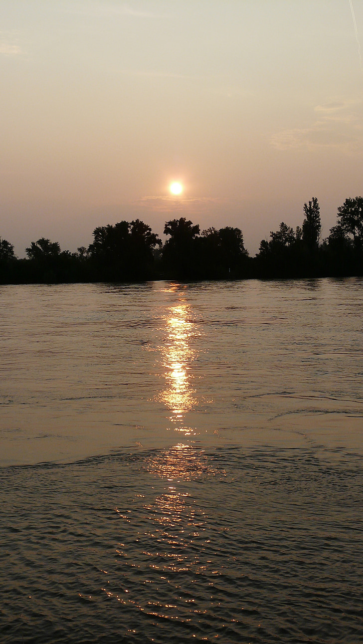 Alba, Nierstein, riu, sol, estat d'ànim, l'aigua