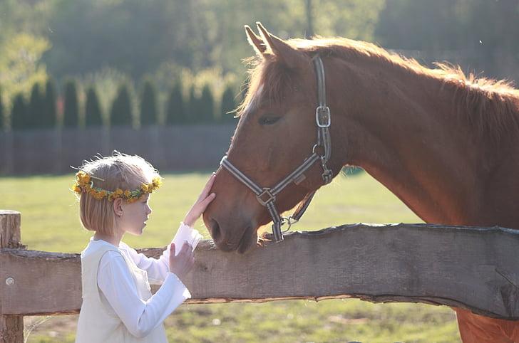 malá holčička, kůň, Jezdecká škola, koňské hlavy