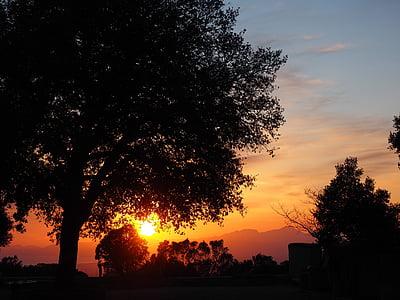 kvällssolen, Afterglow, Sky, träd, romantiska, solnedgång, solen