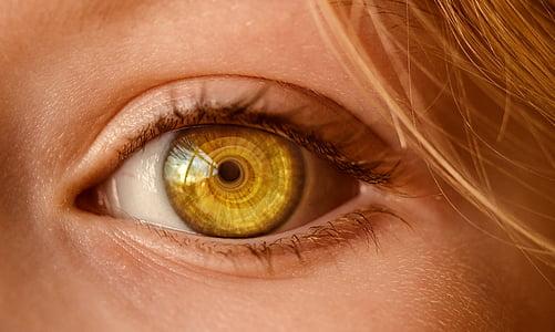 eye, look, eye open, to watch, observe, view, pupil