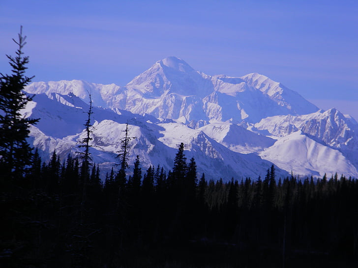 muntanya, Denali, McKinley, pic, a l'exterior, Alaska, desert