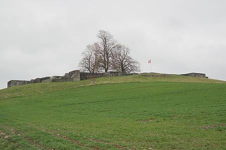 Castell, Kastell irgenhausen, Fortificació romana, irgenhausen, Pfäffikon, Suïssa, llimes