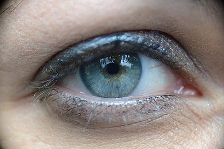 eyes, look, œil, human eye, eyelash, human body part, eyesight