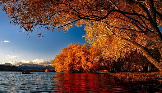 Nova Zelanda, Llac tekapo, Reflexions, paisatge, escèniques, tardor, tardor